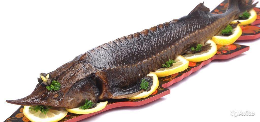 как обработать рыбу от паразитов