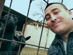 Доиная коза