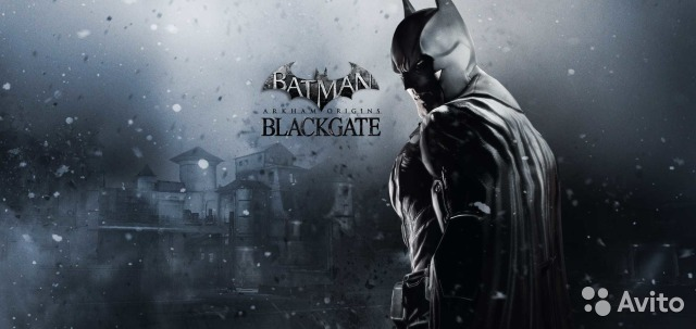Batman. Arkham Origins. Blackgate (PS Vita) (англ)— фотография №1