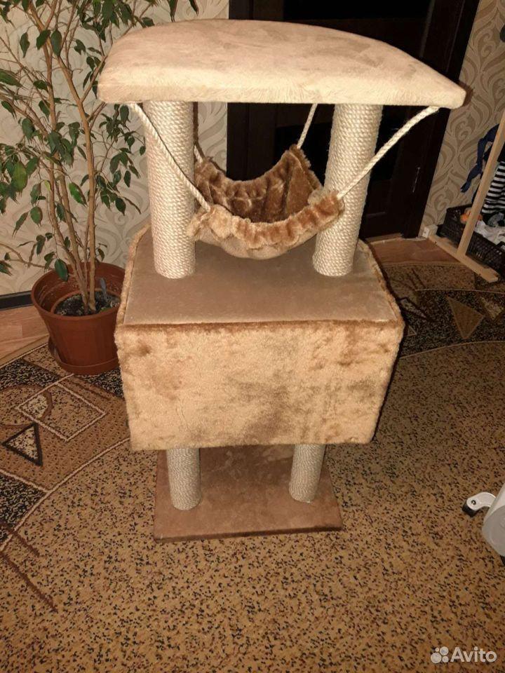 Комплекс для кота  89082392121 купить 2
